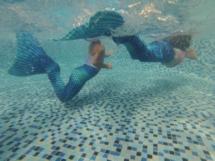 Magical Mermaids611
